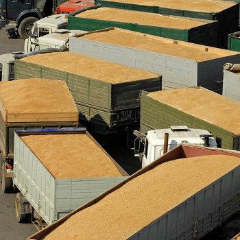 Работа зернового терминала в грузовом порту Новороссийска
