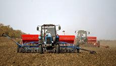 Эксперт: На Украине должен быть запущен рынок земли