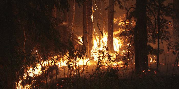 Пожары в Луховицком районе Московской области