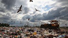 Выездная проверка Росреестра по Московской области полигонов бытовых отходов