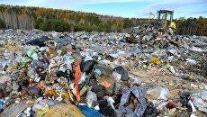Во львовском мусоре, сваленном в Житомирской области, нашли переписку Садового