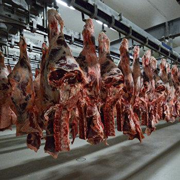 Мясоперерабатывающее предприятие АПХ Мираторг в Брянской области