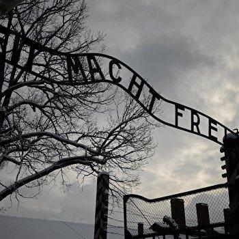 Бывшие узники концентрационного лагеря Аушвиц посетили музей Аушвиц-Биркенау