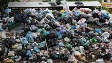 Проблема утилизации мусора во Львове