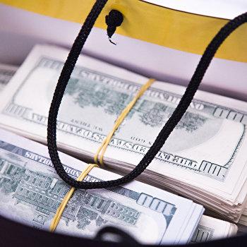 взятка доллары сумка