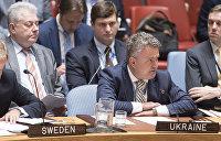 Адвокат Януковича: Представители Украины при ООН стали соучастниками госпереворота