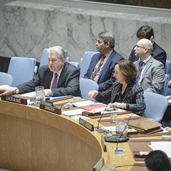 Владимир Ельченко ООН