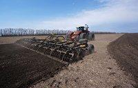 Устенко: В современном мире нет ни одной аграрной сверхдержавы