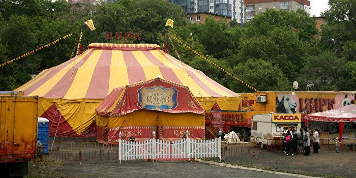 Большой Киевский цирк-шапито во Владивостоке