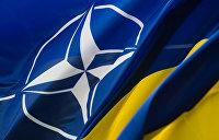 Венгрия запретила саммит Украина — НАТО