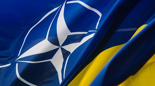 НАТО: не утраченные иллюзии Украины