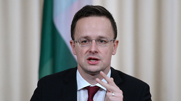 Гриневич: Венгрия перекручивает ситуацию сзаконом «Обобразовании»