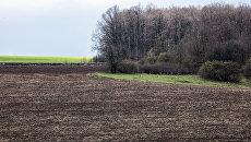 Всемирный банк пророчит Украине значительное подорожание земли