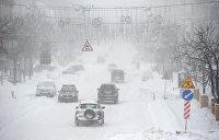 Украинская коррупция обнаружилась в снежных сугробах