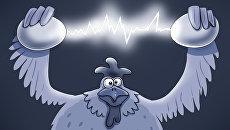 Польша напугана украинскими яйцами
