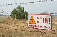 В Чернобыле полыхает пожар